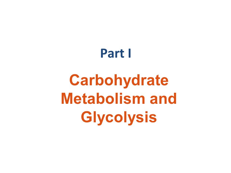 Carbohydrate Metabolism and Glycolysis