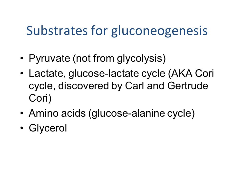Substrates for gluconeogenesis