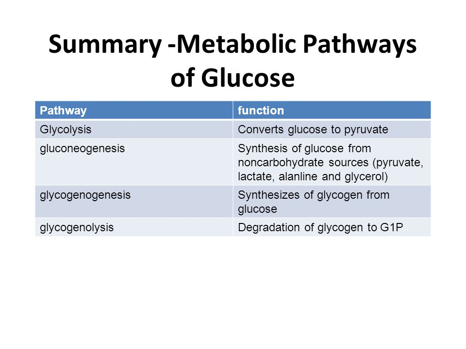 Summary -Metabolic Pathways of Glucose