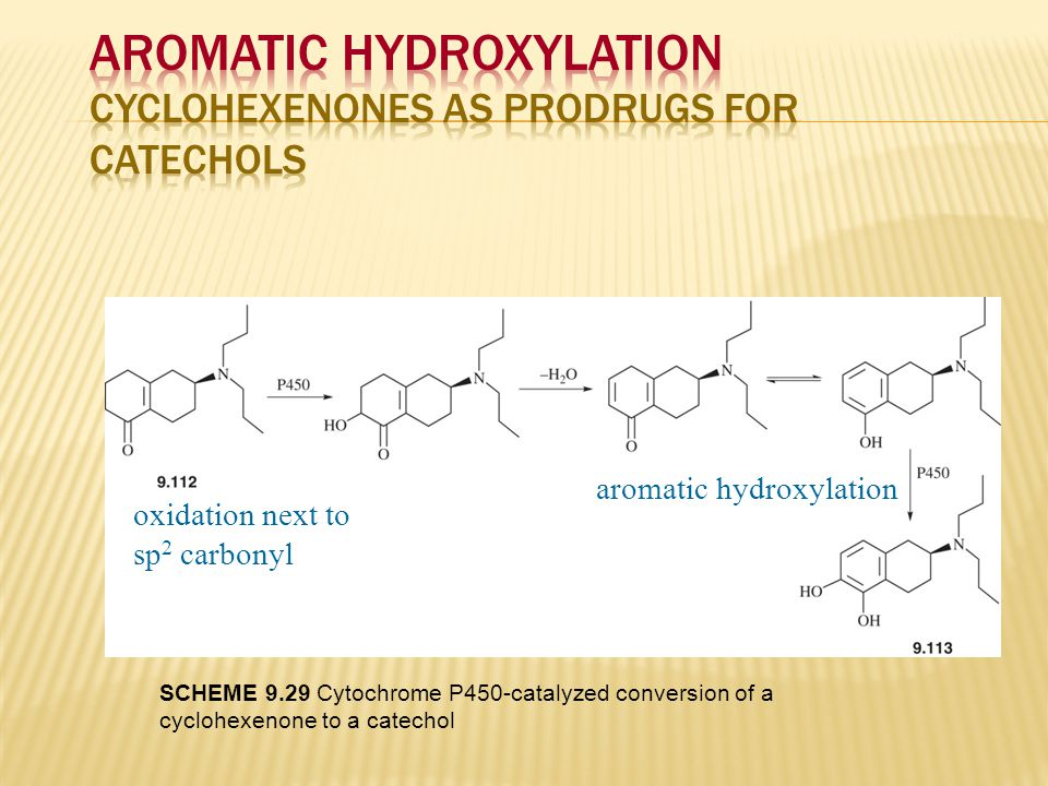 Aromatic Hydroxylation Cyclohexenones as prodrugs for catechols