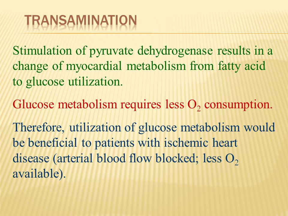 Transamination Stimulation of pyruvate dehydrogenase results in a change of myocardial metabolism from fatty acid to glucose utilization.