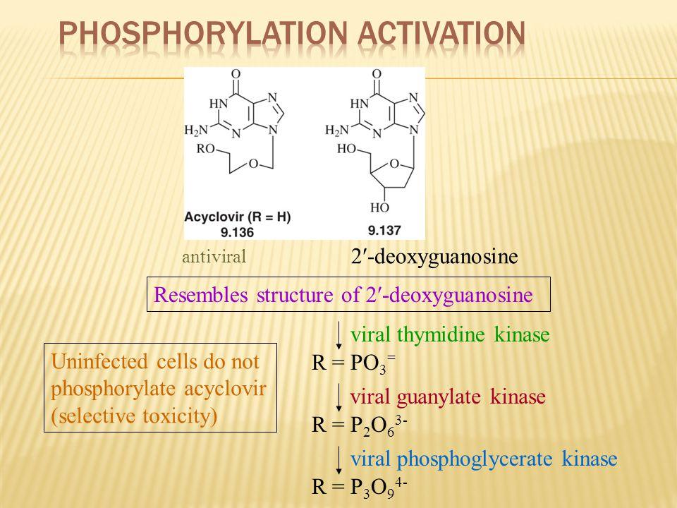 Phosphorylation Activation