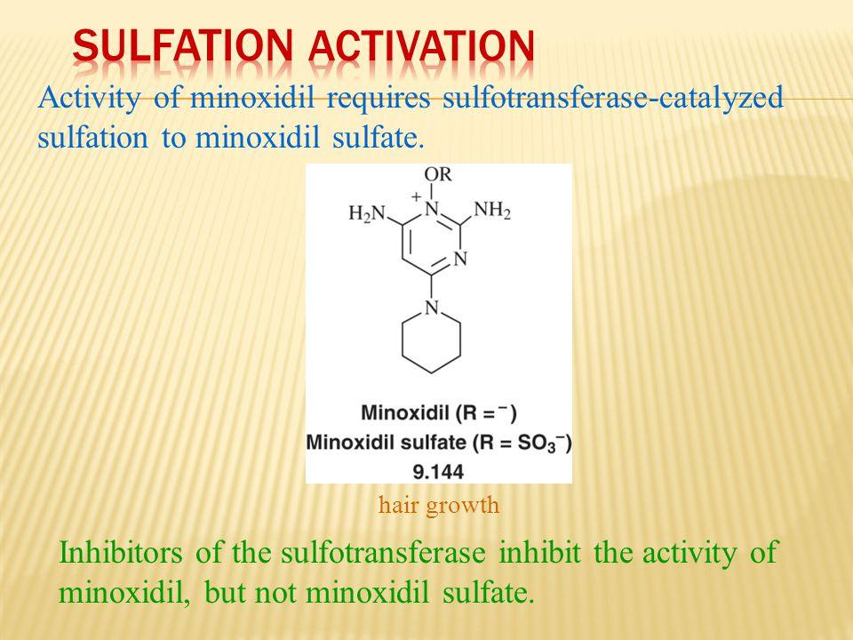 Sulfation Activation Activity of minoxidil requires sulfotransferase-catalyzed sulfation to minoxidil sulfate.
