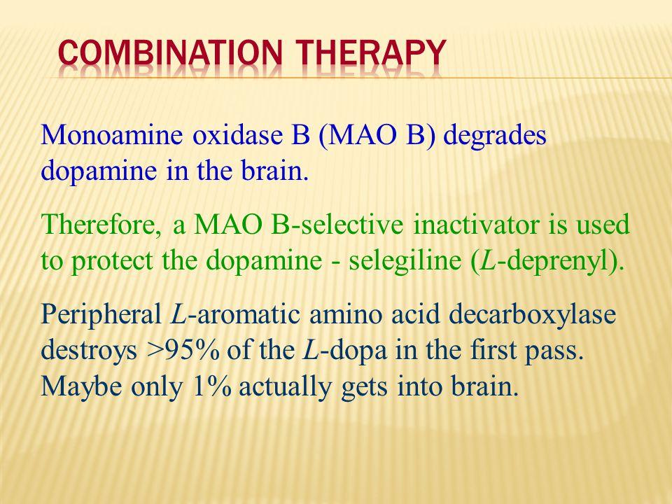 Combination Therapy Monoamine oxidase B (MAO B) degrades dopamine in the brain.
