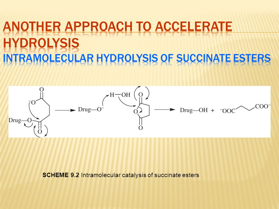 Another Approach to Accelerate Hydrolysis Intramolecular hydrolysis of succinate esters