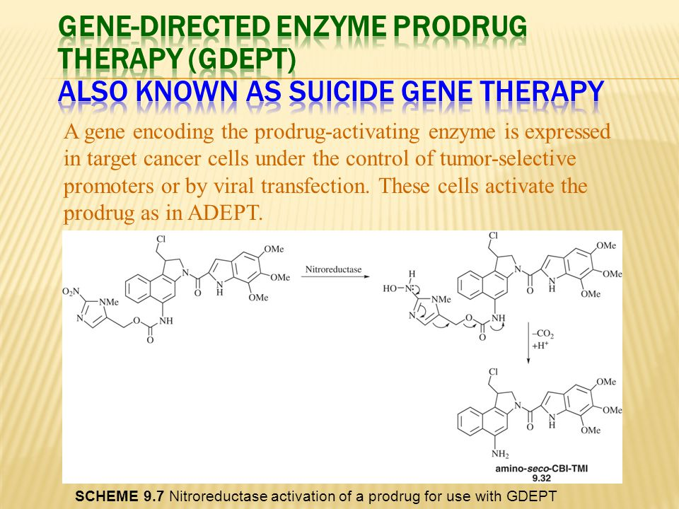 Gene-Directed Enzyme Prodrug Therapy (GDEPT) Also known as suicide gene therapy