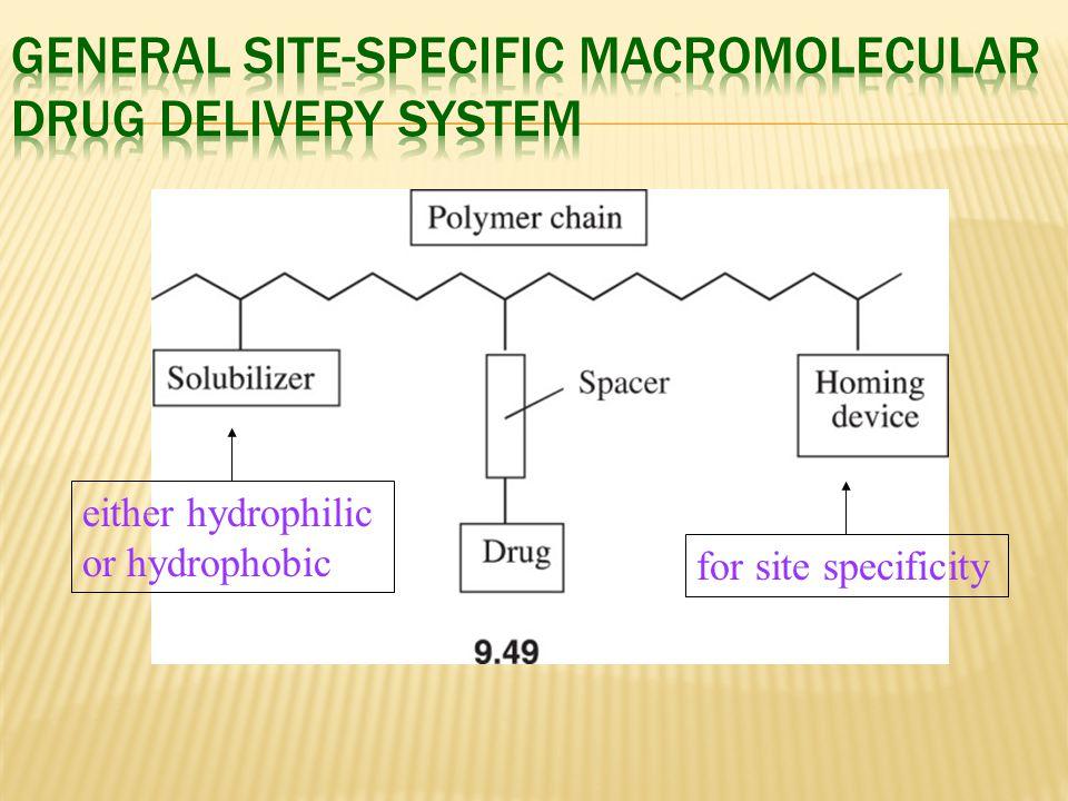 General Site-Specific Macromolecular Drug Delivery System