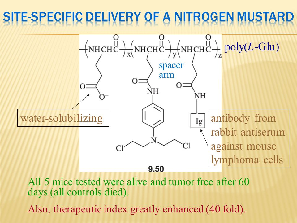 Site-Specific Delivery of a Nitrogen Mustard