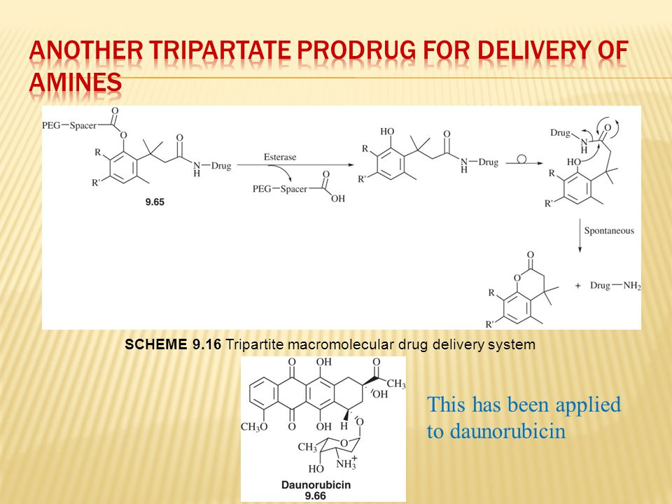 Another Tripartate Prodrug for Delivery of amines