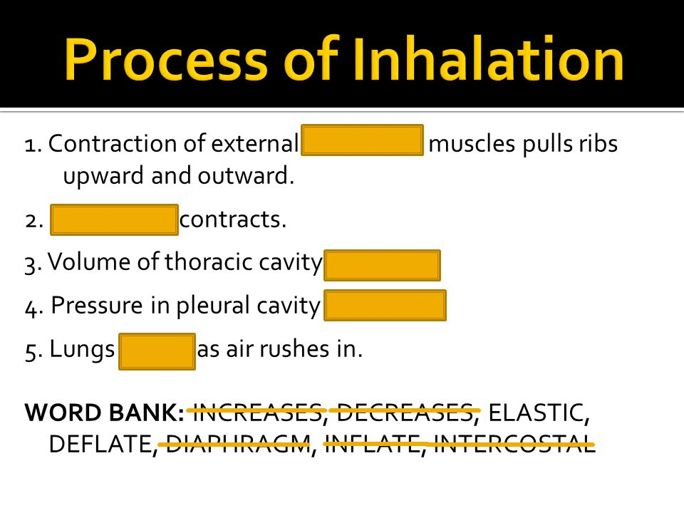 Process of Inhalation