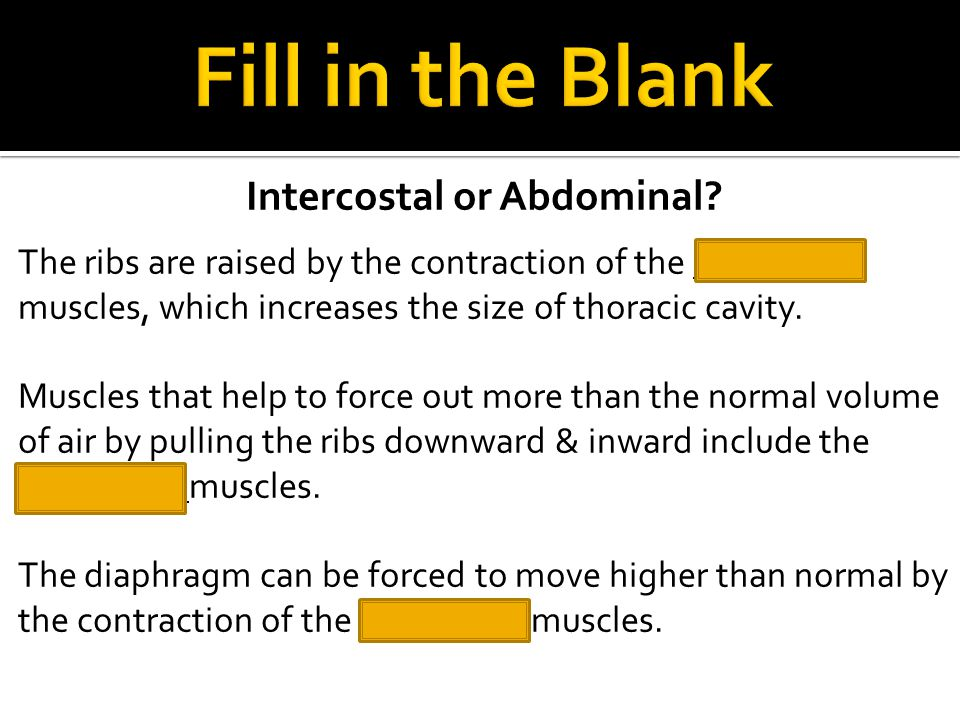 Intercostal or Abdominal