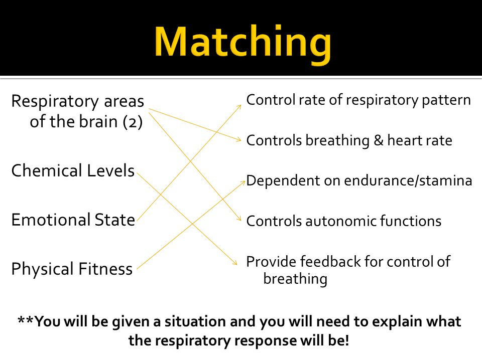 Matching Respiratory areas of the brain (2) Chemical Levels Emotional State Physical Fitness