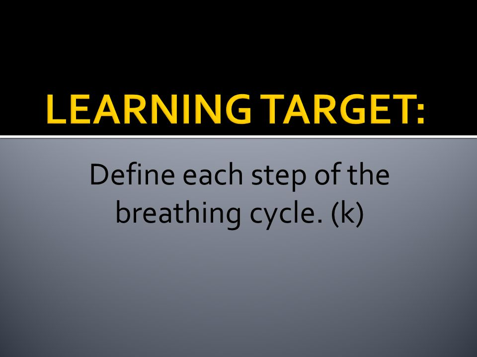 Define each step of the breathing cycle. (k)