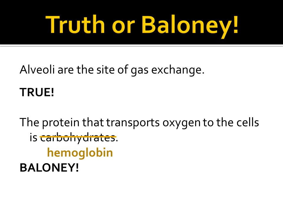 Truth or Baloney. Alveoli are the site of gas exchange.