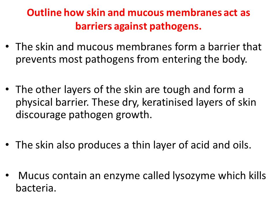 The skin also produces a thin layer of acid and oils.