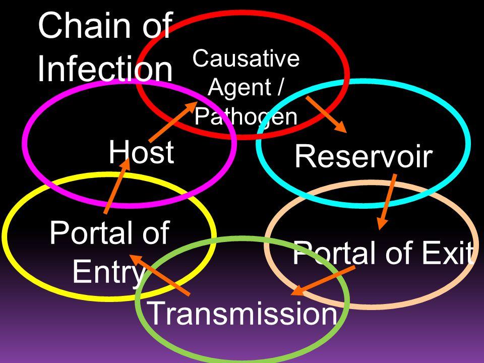 Causative Agent / Pathogen