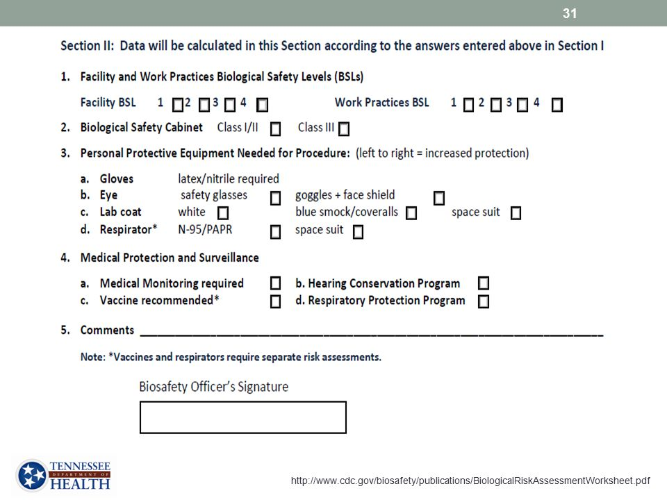 For this form, fields in Section II will automatically populate based on the answers given in Section 1