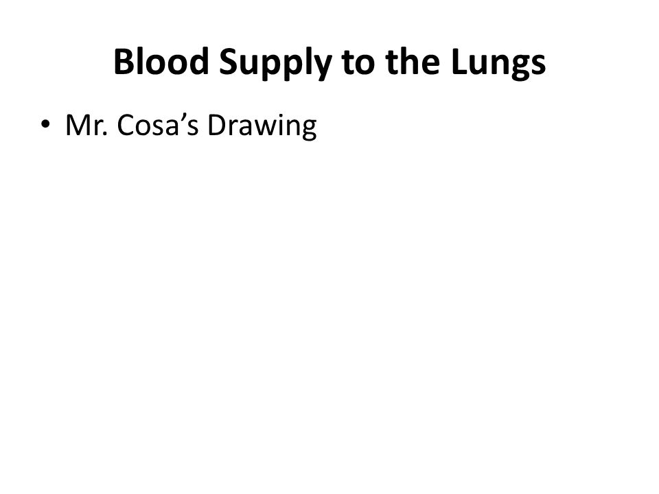 Blood Supply to the Lungs