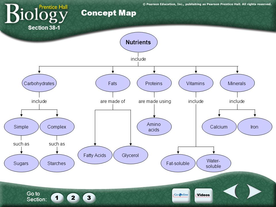 Concept Map Nutrients Section 38-1 include Carbohydrates Fats Minerals