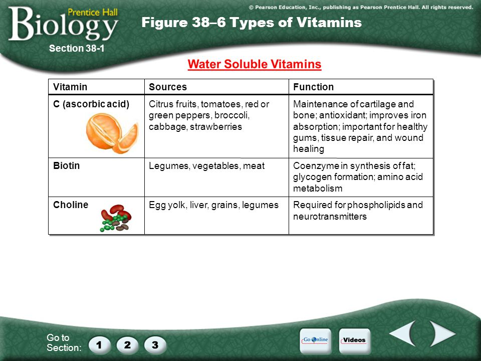 Figure 38–6 Types of Vitamins