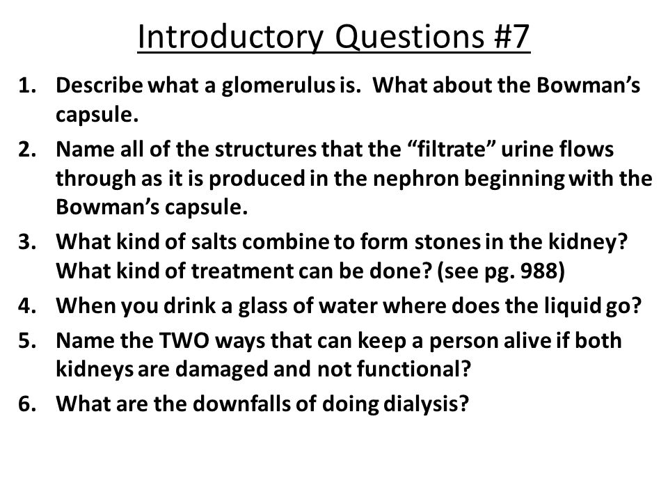 Introductory Questions #7