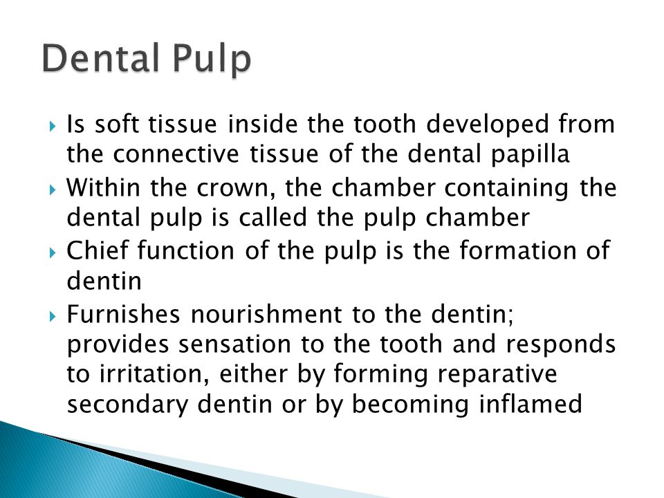 Dental Pulp Is soft tissue inside the tooth developed from the connective tissue of the dental papilla.