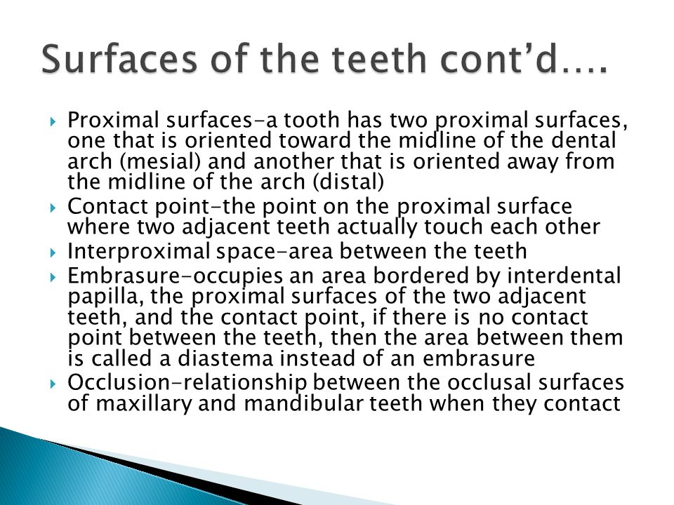Surfaces of the teeth cont'd….