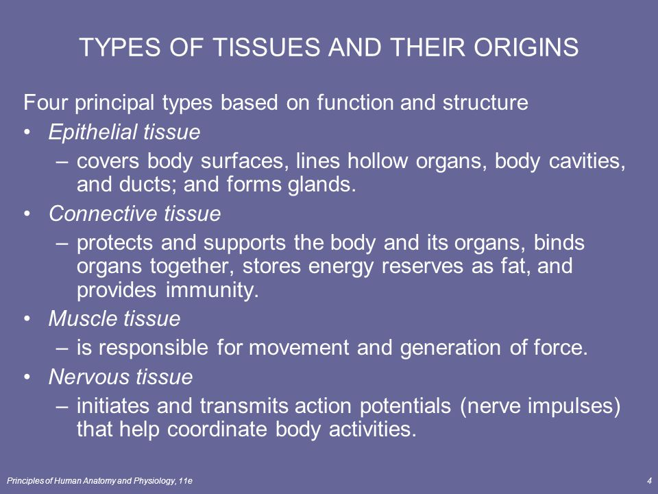 TYPES OF TISSUES AND THEIR ORIGINS