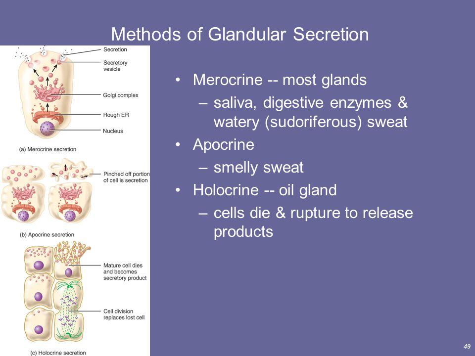Methods of Glandular Secretion