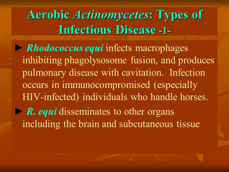 Aerobic Actinomycetes: Types of Infectious Disease -1-