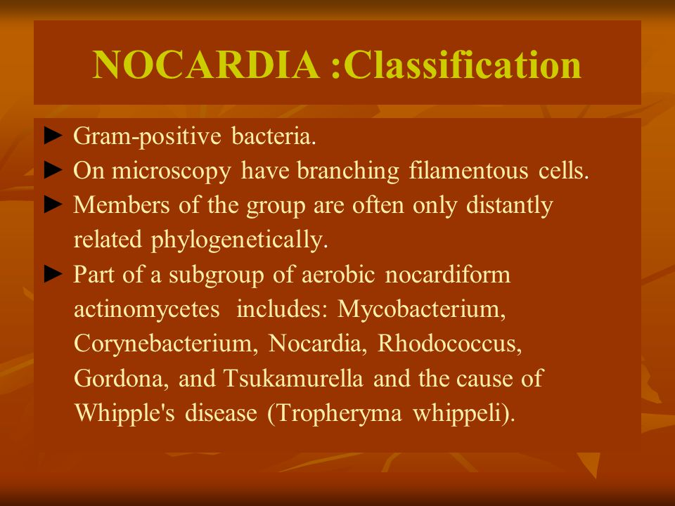 NOCARDIA :Classification