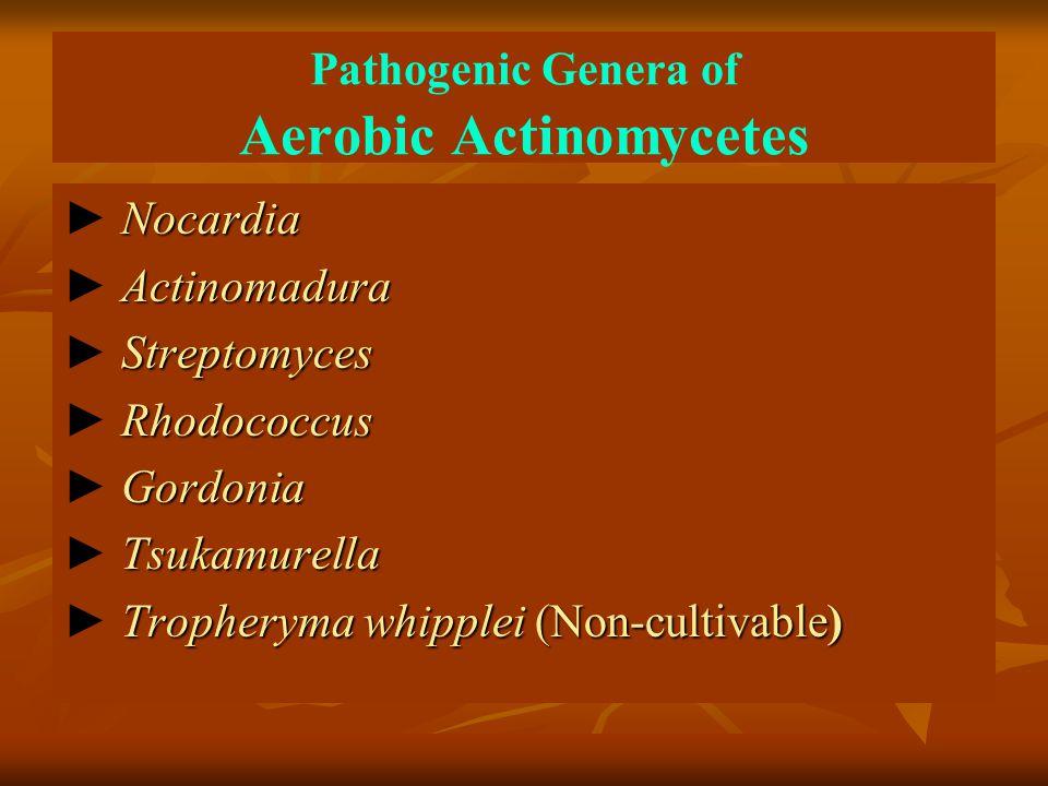 Pathogenic Genera of Aerobic Actinomycetes