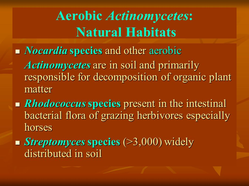 Aerobic Actinomycetes: Natural Habitats