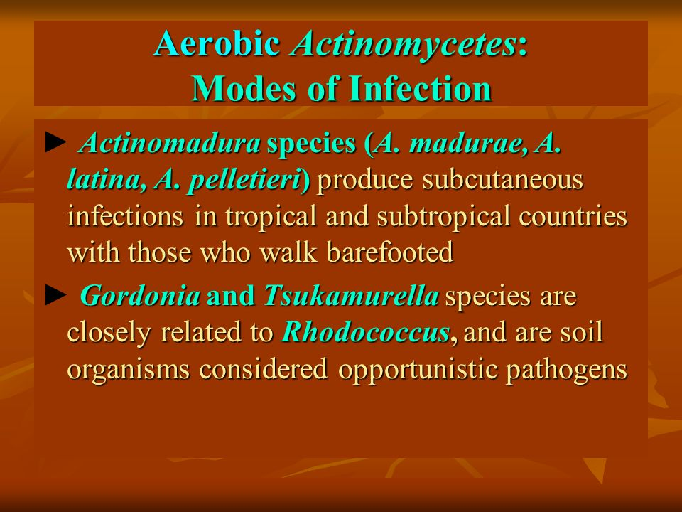 Aerobic Actinomycetes: Modes of Infection