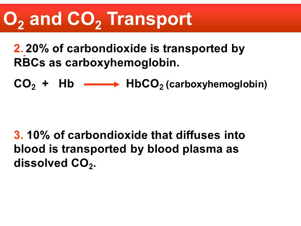 O2 and CO2 Transport 2. 20% of carbondioxide is transported by RBCs as carboxyhemoglobin. CO2 + Hb HbCO2 (carboxyhemoglobin)