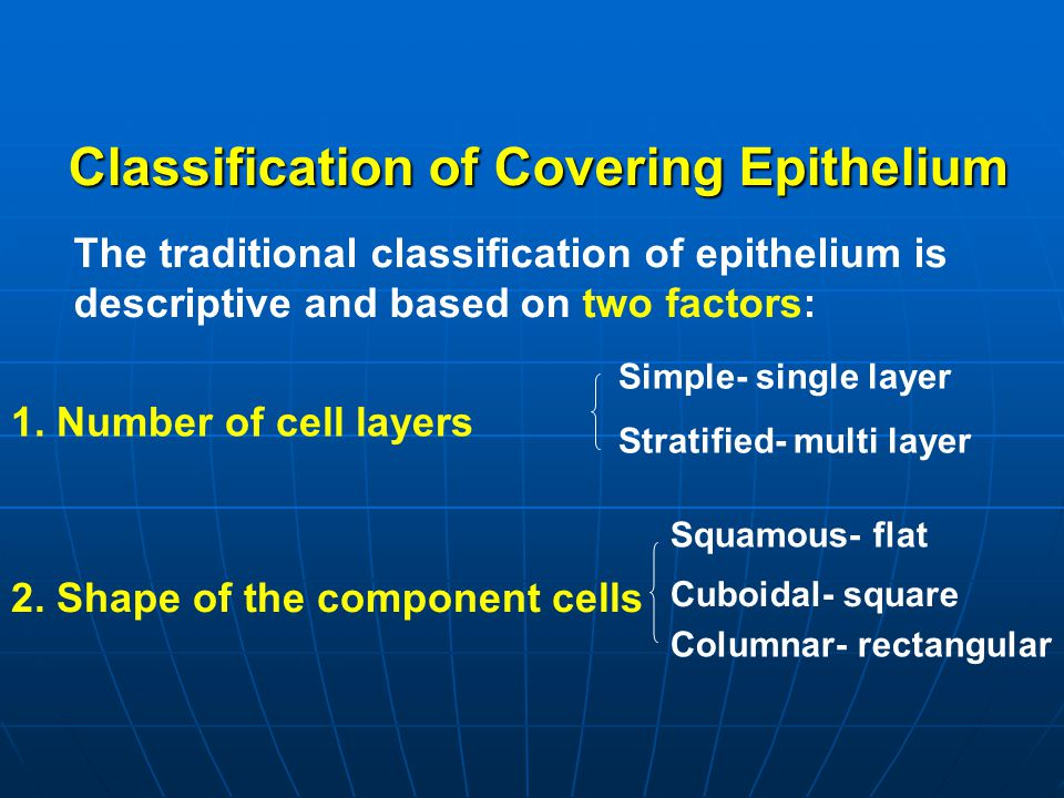 Classification of Covering Epithelium