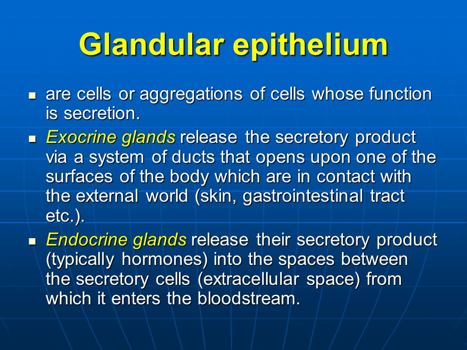 Glandular epithelium are cells or aggregations of cells whose function is secretion.