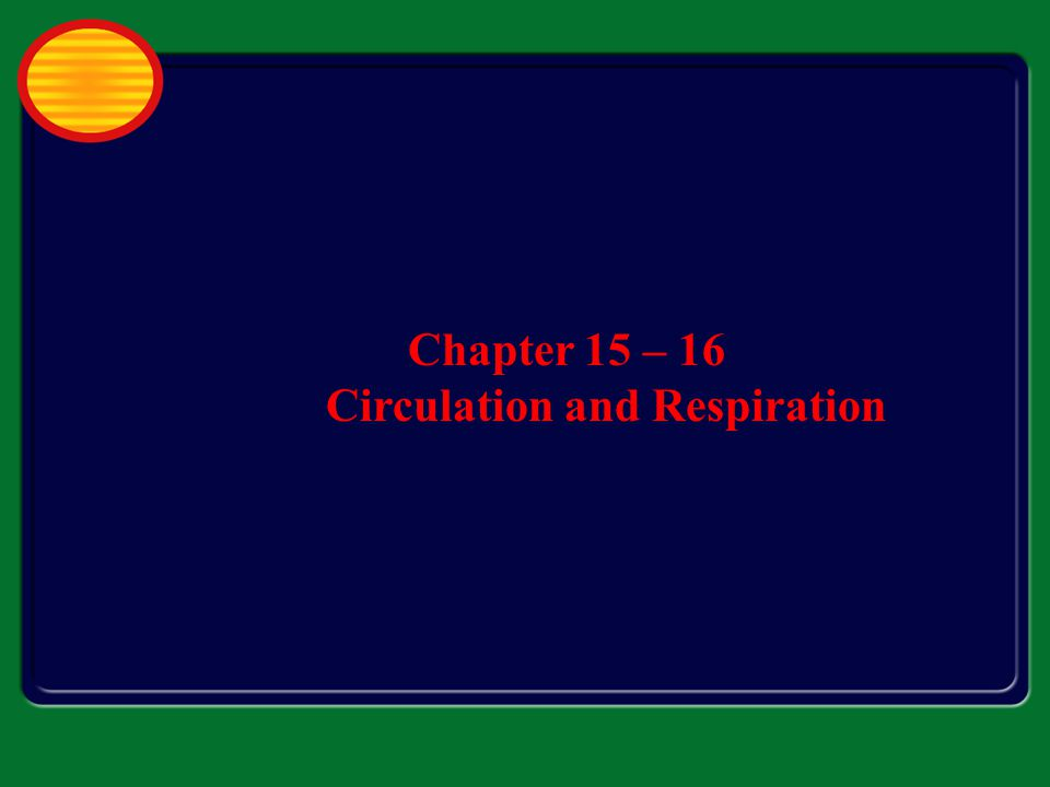 Chapter 15 – 16 Circulation and Respiration
