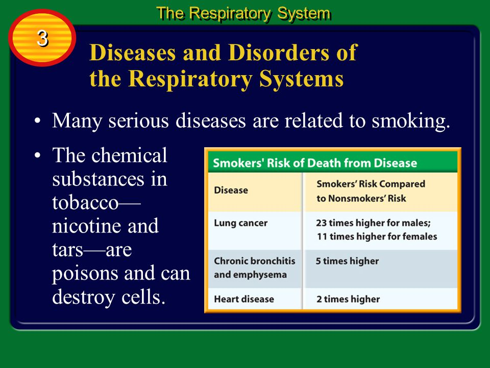 Diseases and Disorders of the Respiratory Systems