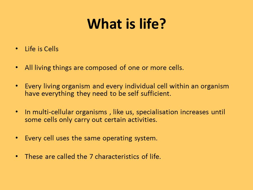 What is life Life is Cells