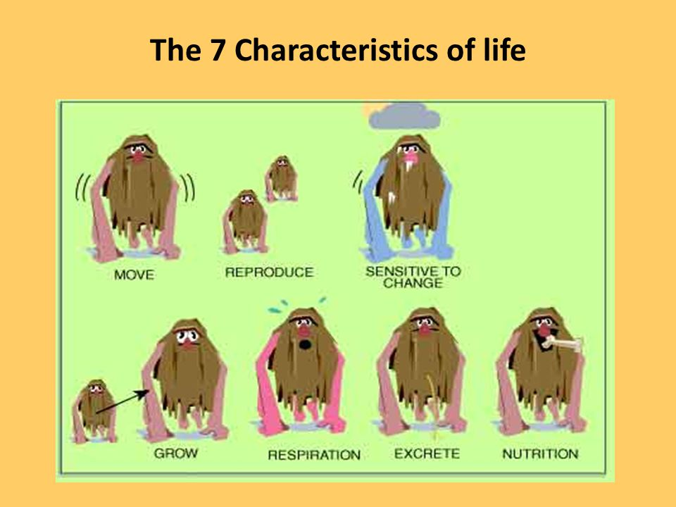 The 7 Characteristics of life