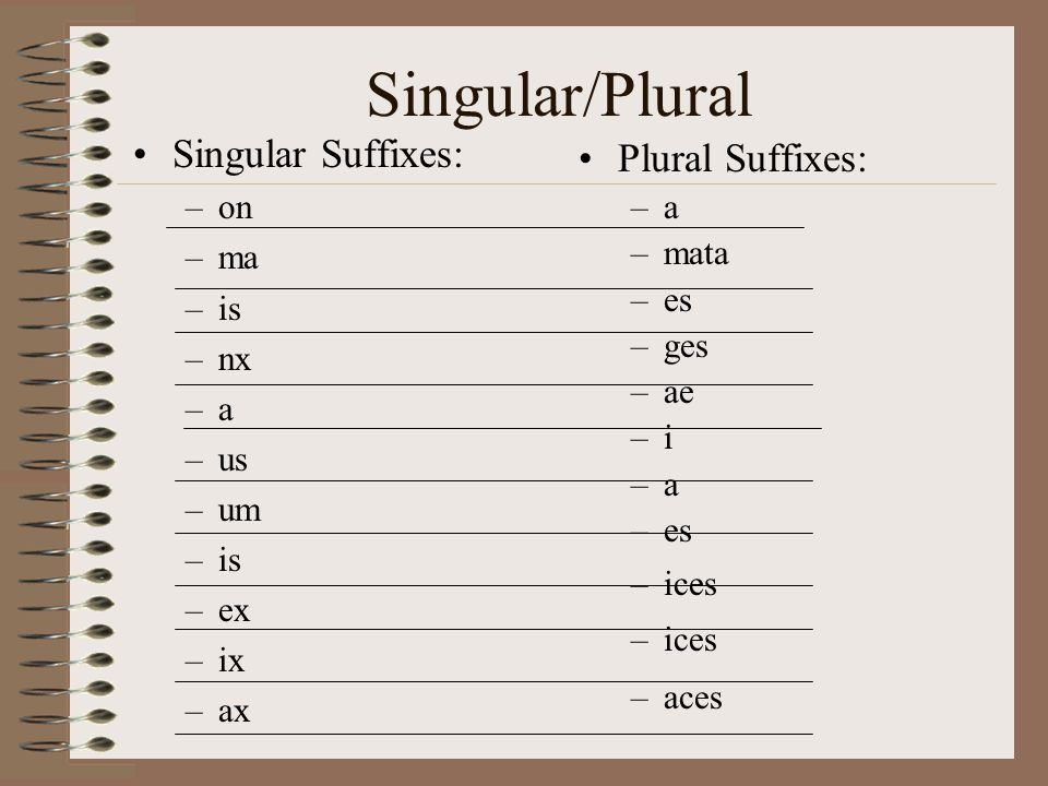 Singular/Plural Singular Suffixes: Plural Suffixes: on ma is nx a us