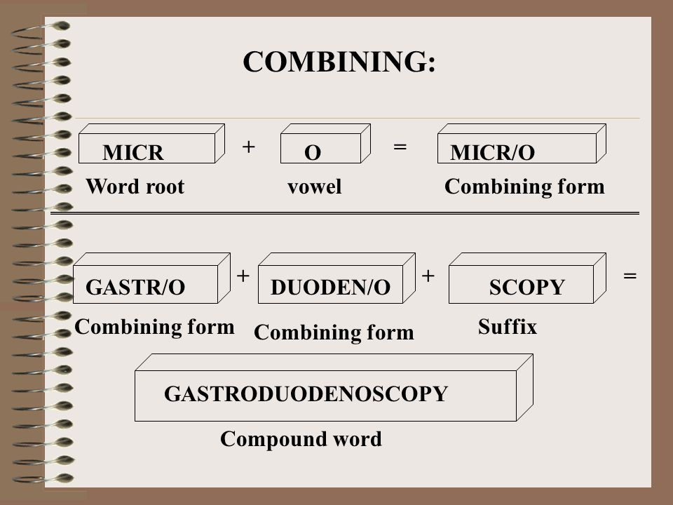 COMBINING: MICR O MICR/O + = Word root vowel Combining form GASTR/O