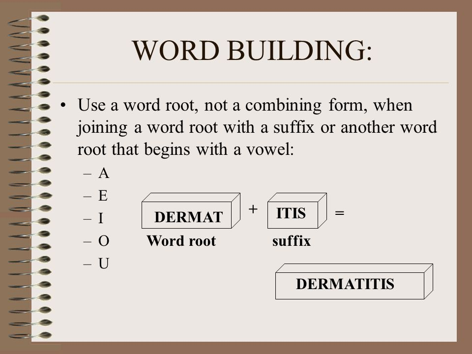 WORD BUILDING: Use a word root, not a combining form, when joining a word root with a suffix or another word root that begins with a vowel:
