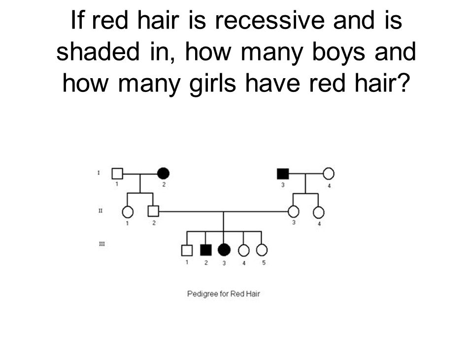If red hair is recessive and is shaded in, how many boys and how many girls have red hair