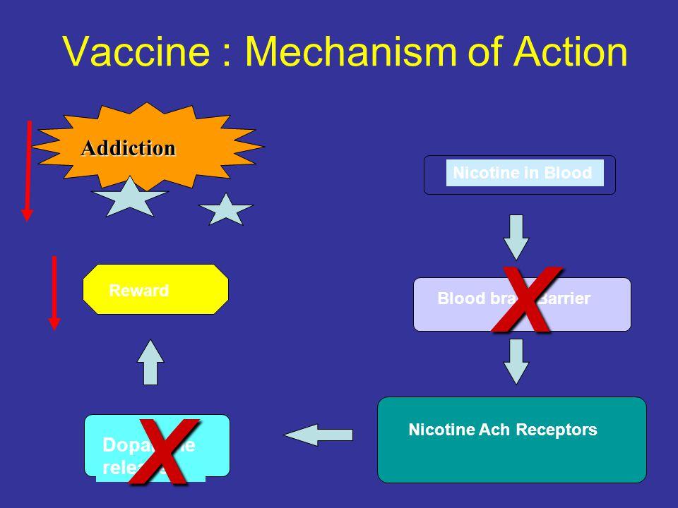 Vaccine : Mechanism of Action