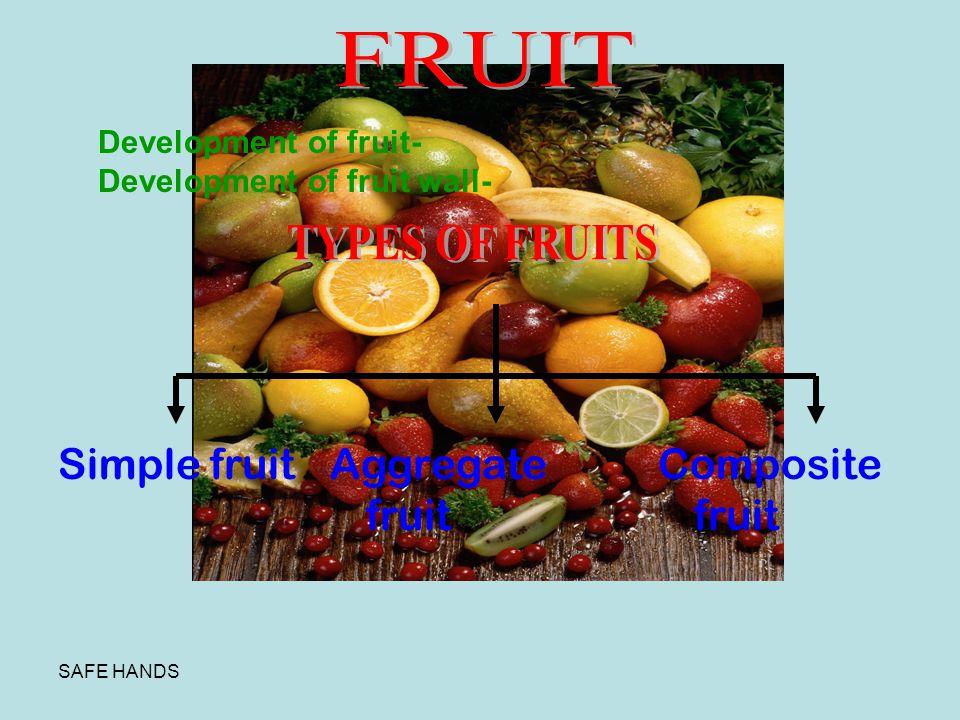 FRUIT Simple fruit Aggregate fruit Composite fruit