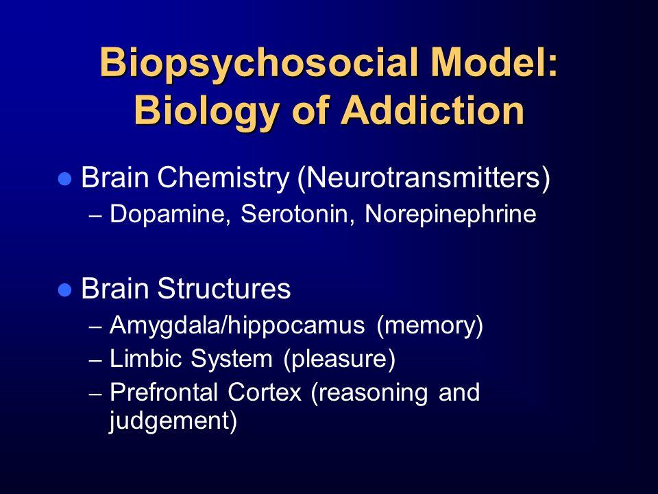 Biopsychosocial Model: Biology of Addiction