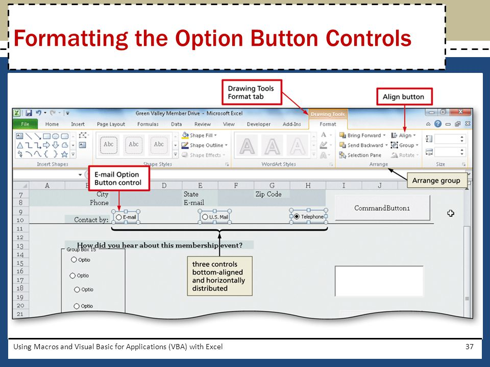 Formatting the Option Button Controls