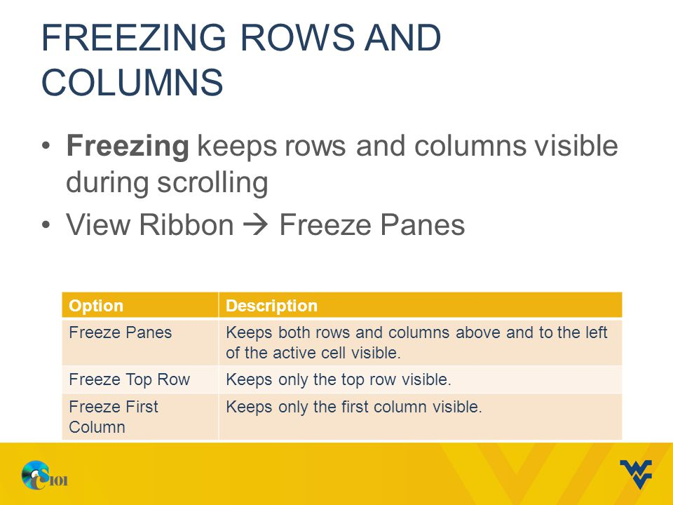 Freezing Rows and Columns